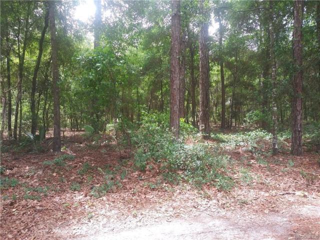 1132 E Woodpecker Lane, Hernando, FL 34442 (MLS #783142) :: Pristine Properties