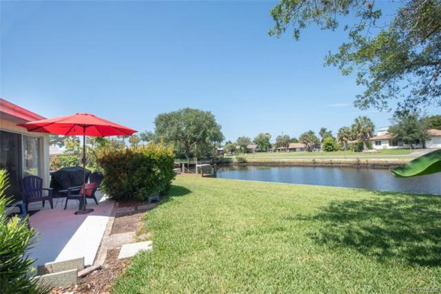 11599 W Kingfisher Court, Crystal River, FL 34429 (MLS #783177) :: Pristine Properties