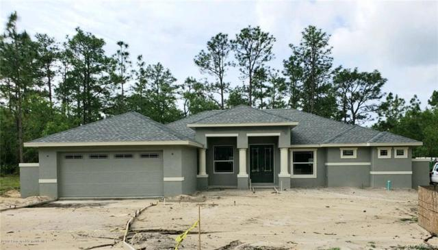 7 Mayten Court S, Homosassa, FL 34446 (MLS #783186) :: Plantation Realty Inc.
