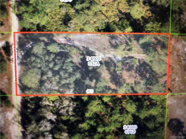 4345 N Mandrake Point, Crystal River, FL 34428 (MLS #783203) :: Plantation Realty Inc.