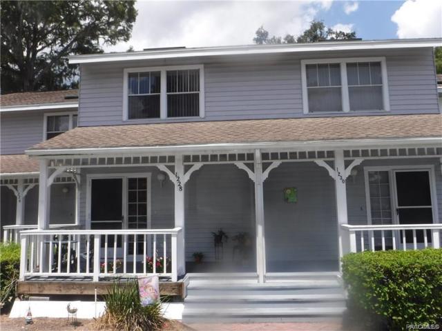 1228 Cypress Cove Court, Inverness, FL 34450 (MLS #783209) :: Plantation Realty Inc.