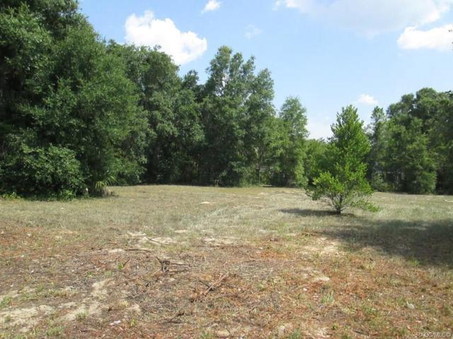 507 Deer Run Road, Inverness, FL 34453 (MLS #783227) :: Pristine Properties