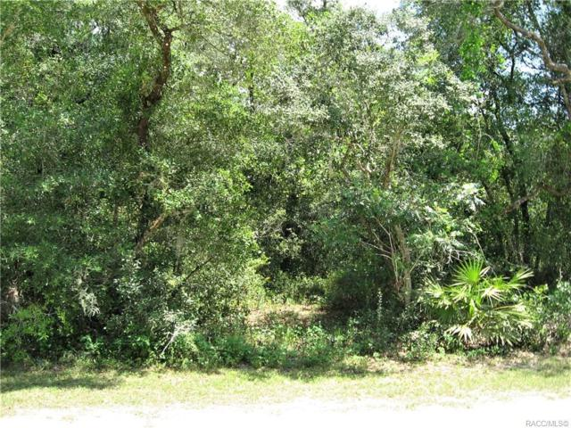 4147 E Camp Izzard Place, Dunnellon, FL 34434 (MLS #783232) :: Pristine Properties