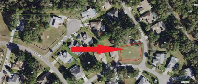 3095 E Sweet Meadow Court, Hernando, FL 34442 (MLS #783253) :: Pristine Properties