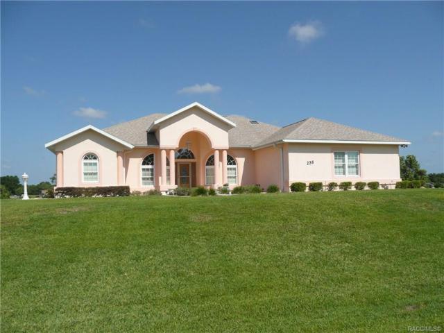 236 N Hambletonian Drive, Inverness, FL 34453 (MLS #783255) :: Plantation Realty Inc.