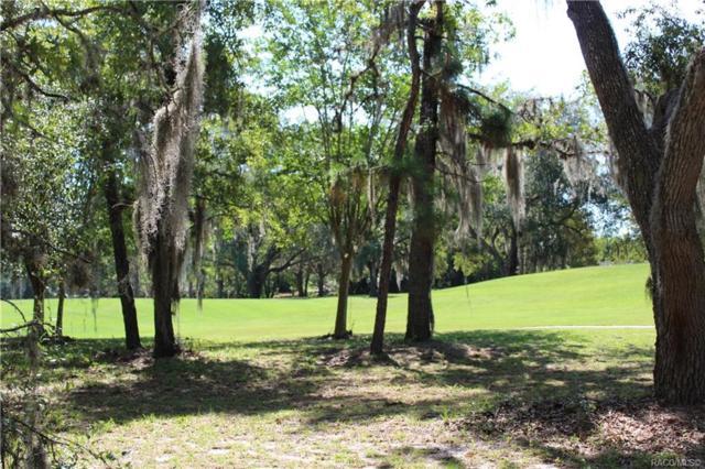 Lecanto, FL 34461 :: Pristine Properties