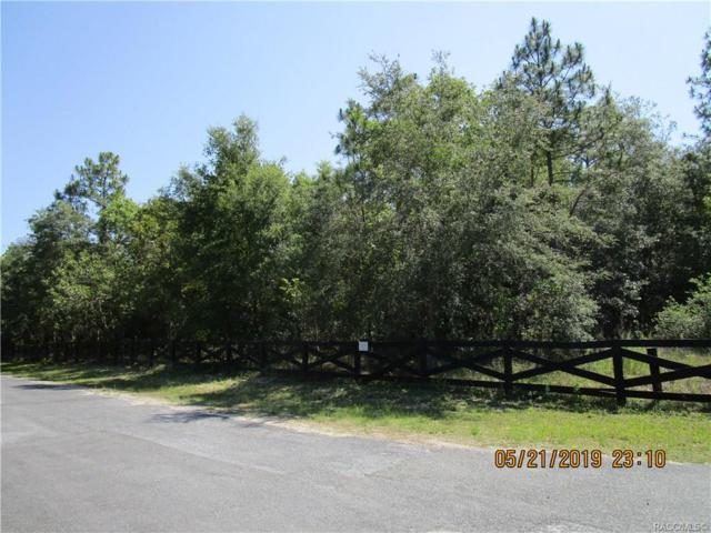 1847 N Frazier Terrace, Hernando, FL 34442 (MLS #783257) :: Pristine Properties