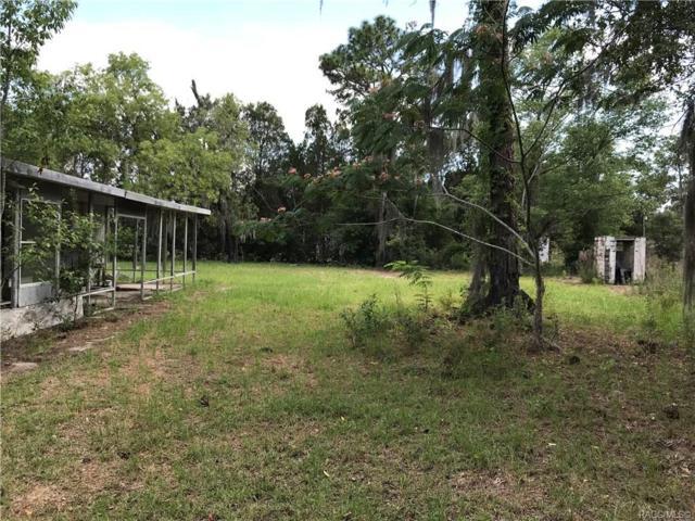 4770 N Elm Drive, Crystal River, FL 34428 (MLS #783273) :: Pristine Properties