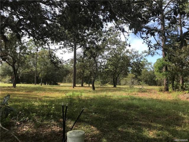 4 Barkwood Point, Homosassa, FL 34446 (MLS #783275) :: Plantation Realty Inc.