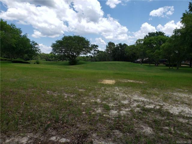 3541 N Pine Valley Loop, Lecanto, FL 34461 (MLS #783283) :: Plantation Realty Inc.