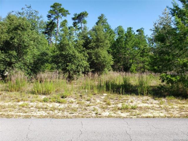 105 Grass Street, Homosassa, FL 34446 (MLS #783303) :: Plantation Realty Inc.