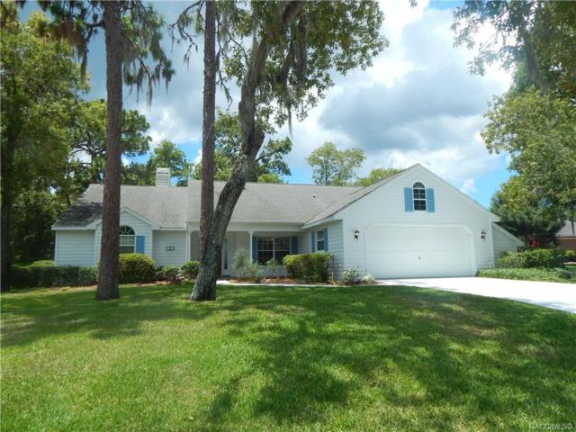 24 Redbay Court W, Homosassa, FL 34446 (MLS #783307) :: Plantation Realty Inc.