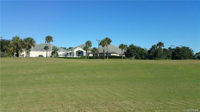 203 W Mickey Mantle Path, Hernando, FL 34442 (MLS #783311) :: Plantation Realty Inc.