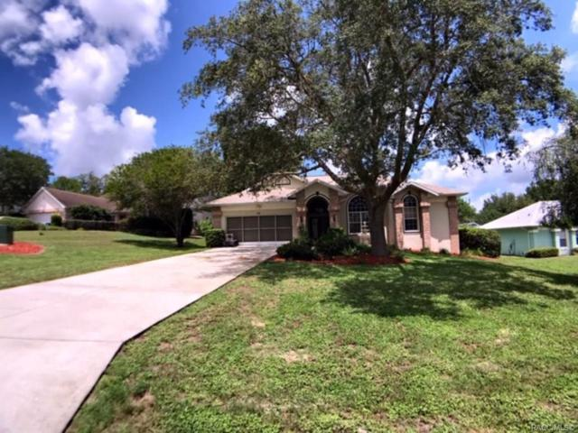 174 N Bluestem Point, Lecanto, FL 34461 (MLS #783354) :: Pristine Properties