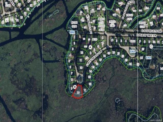 9312 E Mistwood Drive, Inverness, FL 34450 (MLS #783359) :: Plantation Realty Inc.