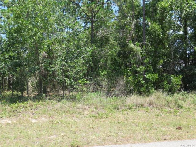 1575 E Mckinley Street, Hernando, FL 34442 (MLS #783382) :: Plantation Realty Inc.