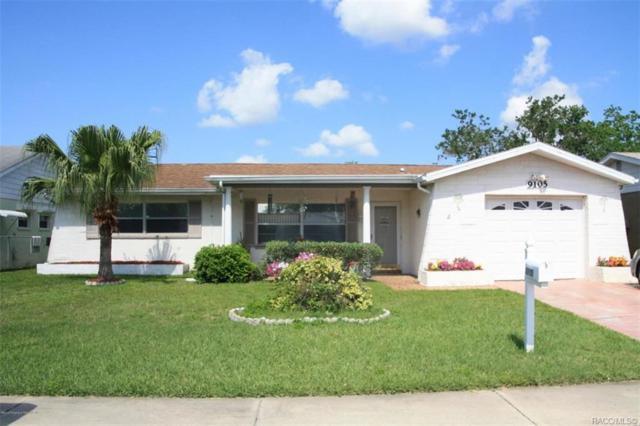 9105 Glen Moor Lane, Port Richey, FL 34668 (MLS #783386) :: Pristine Properties