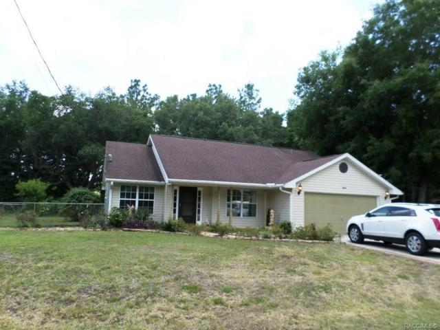 11824 SE 195th Lane, Dunnellon, FL 34431 (MLS #783389) :: Pristine Properties