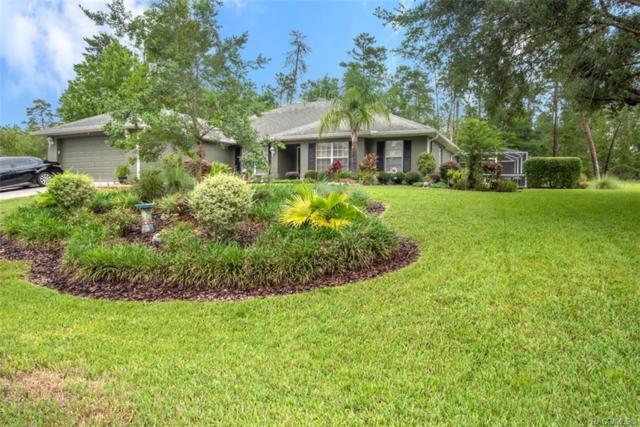 79 Grass Street, Homosassa, FL 34446 (MLS #783446) :: Plantation Realty Inc.
