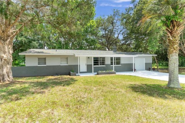 3840 E Laguna Loop, Hernando, FL 34442 (MLS #783479) :: Pristine Properties