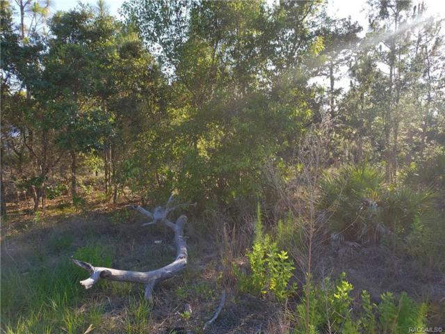 4416 S Alita Terrace, Homosassa, FL 34446 (MLS #783492) :: Plantation Realty Inc.