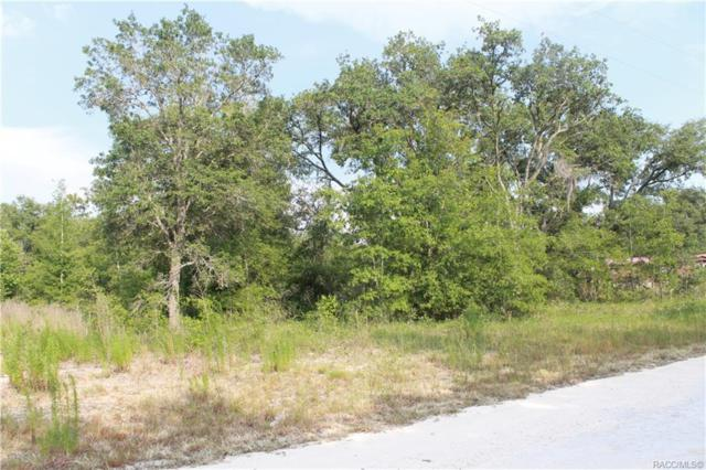 x Ne 139th Terrace, Morriston, FL 32668 (MLS #783502) :: Pristine Properties