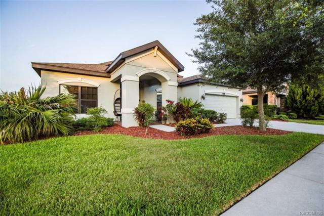 8234 Bluevine Sky Drive, Land 0 Lakes, FL 34637 (MLS #783503) :: Pristine Properties
