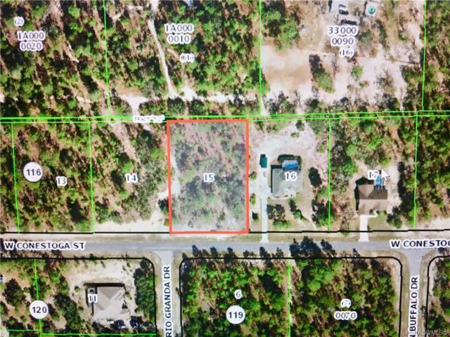6021 W Conestoga Street, Beverly Hills, FL 34465 (MLS #783506) :: Plantation Realty Inc.