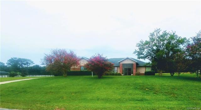 496 N Man O War Drive, Inverness, FL 34453 (MLS #783517) :: Plantation Realty Inc.