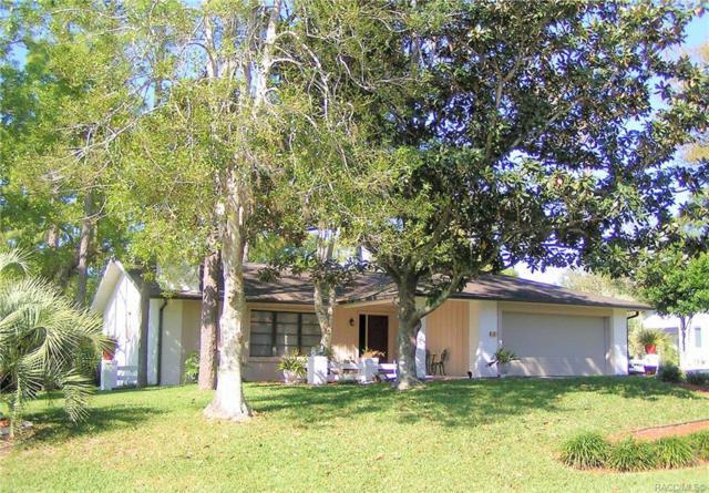 8 Graytwig Court W, Homosassa, FL 34446 (MLS #783539) :: Plantation Realty Inc.