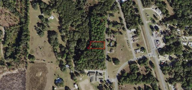 1056 N Christy Way, Inverness, FL 34453 (MLS #783548) :: Plantation Realty Inc.