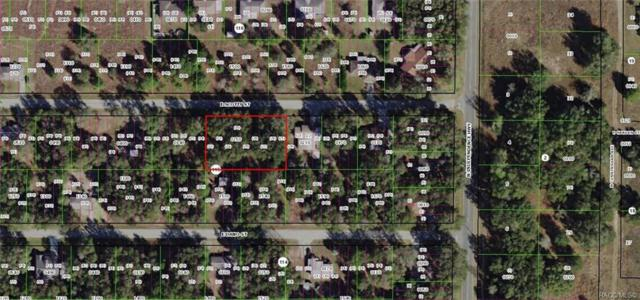 4068 E Scotty Street, Inverness, FL 34453 (MLS #783597) :: Plantation Realty Inc.
