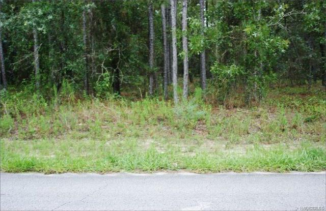 191 Pine Street, Homosassa, FL 34446 (MLS #783598) :: Plantation Realty Inc.