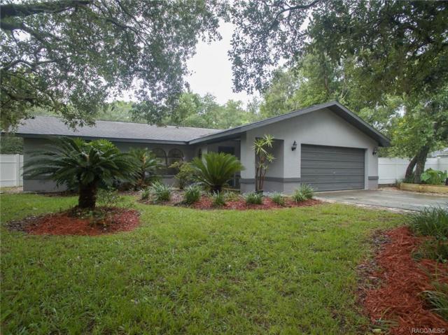 4207 S Winding Oaks Drive, Homosassa, FL 34446 (MLS #783601) :: Plantation Realty Inc.