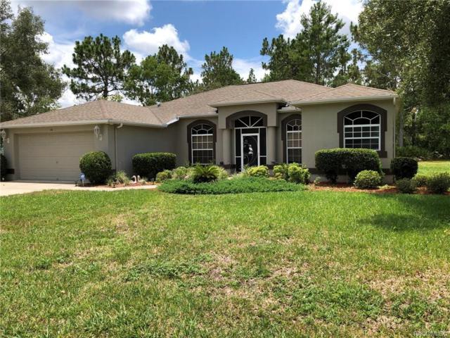 14 Matricaria Court, Homosassa, FL 34446 (MLS #783603) :: Plantation Realty Inc.