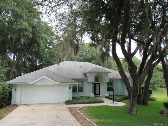 19678 SW 88th Loop, Dunnellon, FL 34432 (MLS #783616) :: Plantation Realty Inc.