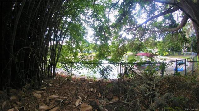 1755 S Cove Walk, Inverness, FL 34450 (MLS #783646) :: Plantation Realty Inc.