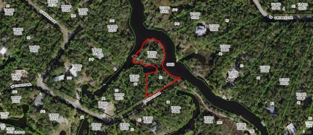 6765 S Beagle Drive, Homosassa, FL 34448 (MLS #783647) :: Plantation Realty Inc.
