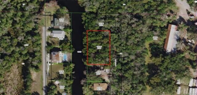 4380 & 4392 S Cox Point, Homosassa, FL 34448 (MLS #783650) :: Plantation Realty Inc.