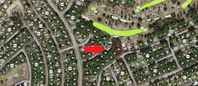 2457 W Dolphin Drive, Citrus Springs, FL 34434 (MLS #783651) :: Pristine Properties