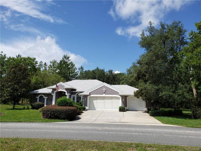 16 Judi Court, Homosassa, FL 34446 (MLS #783668) :: Pristine Properties