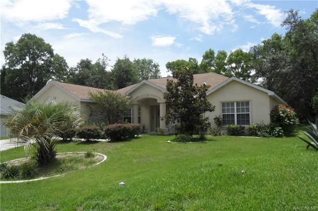 9 Jungleplum Court W, Homosassa, FL 34446 (MLS #783674) :: Pristine Properties
