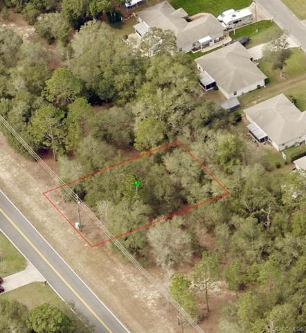 785 W Country Club Boulevard, Citrus Springs, FL 34434 (MLS #783683) :: Plantation Realty Inc.