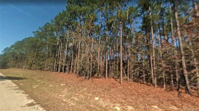 563 E Kingsdale Street, Citrus Springs, FL 34434 (MLS #783698) :: Plantation Realty Inc.