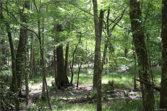 0 SE 21st Avenue, Inglis, FL 34449 (MLS #783712) :: Plantation Realty Inc.
