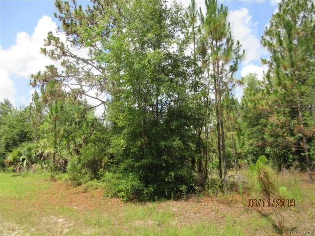 8682 N San Filippo Loop, Crystal River, FL 34428 (MLS #783716) :: Plantation Realty Inc.