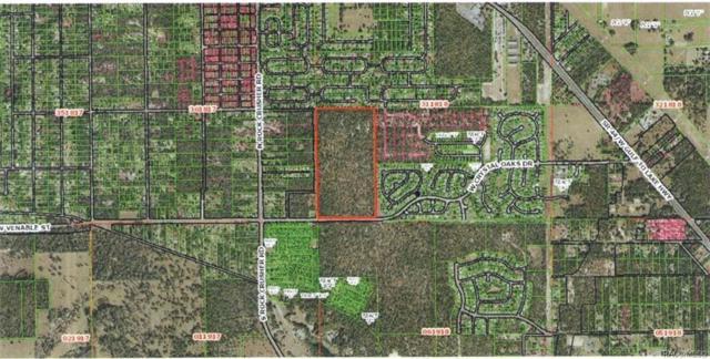 5859 W Crystal Oaks Drive, Lecanto, FL 34461 (MLS #783717) :: Plantation Realty Inc.