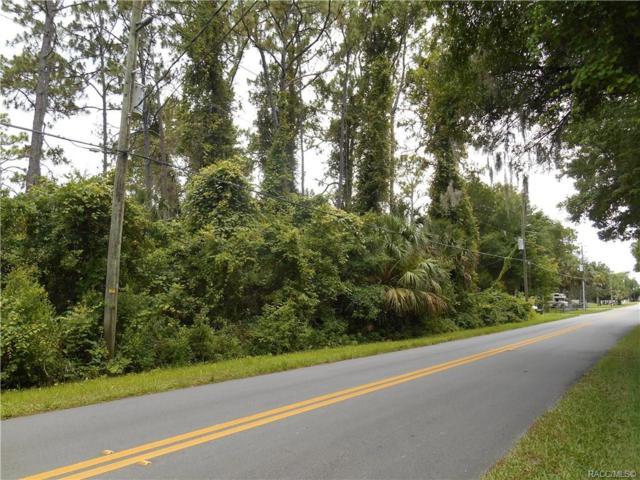 8358 W Highland Street, Homosassa, FL 34448 (MLS #783718) :: Plantation Realty Inc.