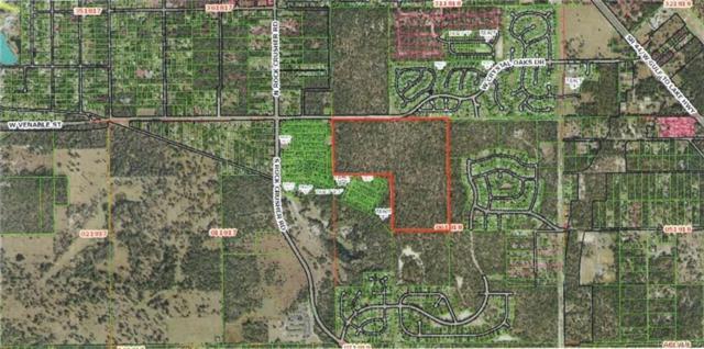5750 W Crystal Oaks Drive, Lecanto, FL 34429 (MLS #783721) :: Plantation Realty Inc.