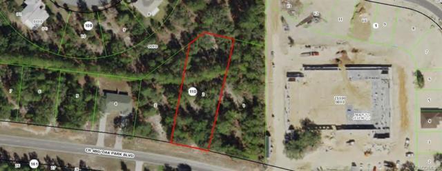 5505 W Oak Park Boulevard, Homosassa, FL 34446 (MLS #783731) :: Plantation Realty Inc.